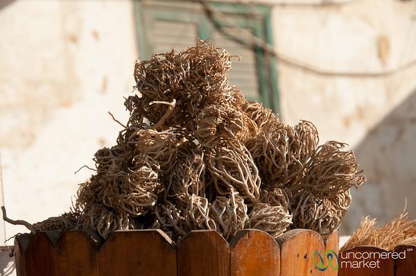 Dried flowers - El Quseir, Egypt
