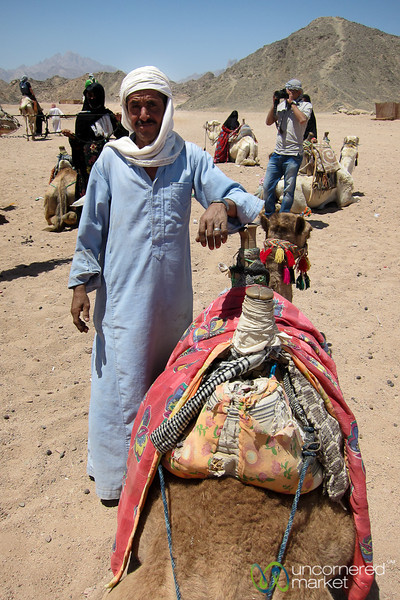 A Bedouin Man with his Camel - Hurghada, Egypt
