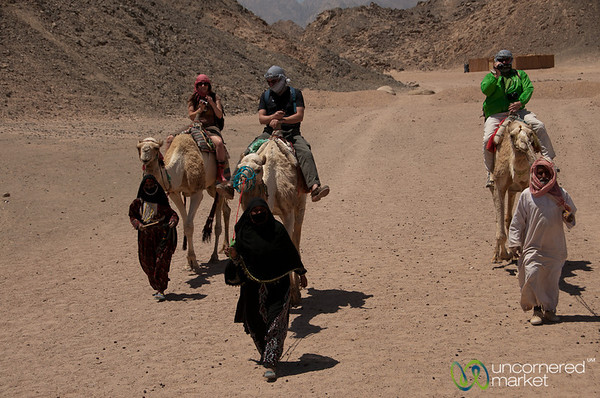 Camel Ride in the Desert - Hurghada, Egypt
