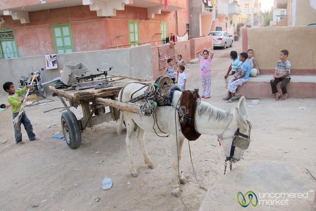 Donkey Cart and Street Scene - El Quseir, Egypt