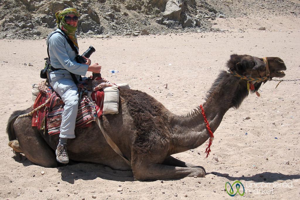 Audrey on a Camel - Hurghada, Egypt