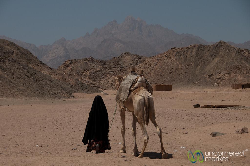 Camel Ride in the Desert - Hurghada, Egypt