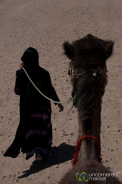 On a Camel Through the Desert - Hurghada, Egypt