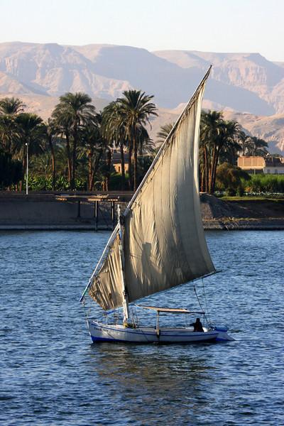 Luxor, it's People, 2007
