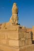 Wadi el Saboua, Sphinx