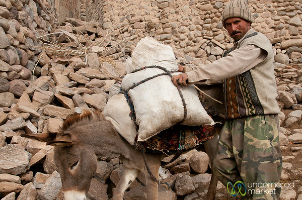 Iranian Man and Donkey - Kandovan, Iran