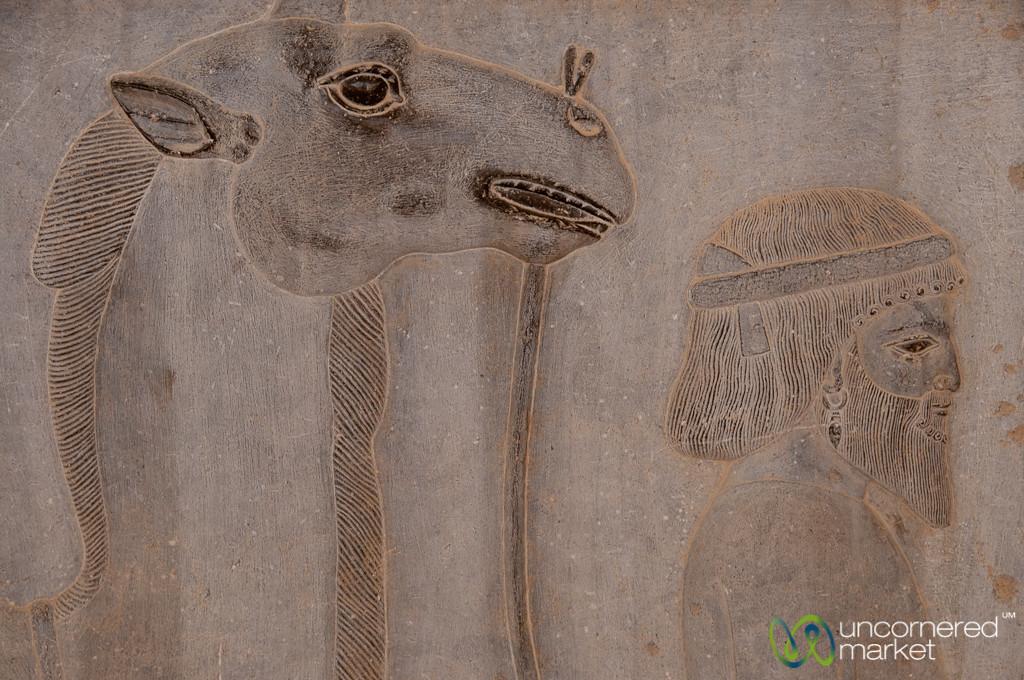 Apadana Palace Reliefs of Subject Nations - Persepolis, Iran