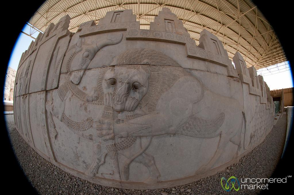 Persepolis Reliefs in Fisheye - Iran