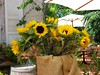 These flowers were at a cafe in town of Zichron Yakov, a cute village that reminded me much of Carmel, California.