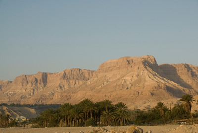 View of Judean Mountains from the ground - Israel