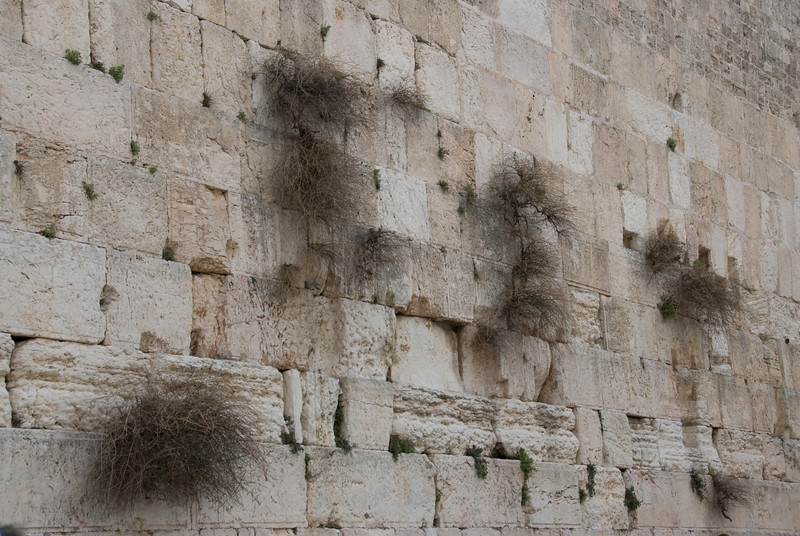 The Western Wall in the Temple Mount - Jerusalem, Israel