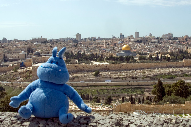 Skull and the skyline of Jerusalem in Israel