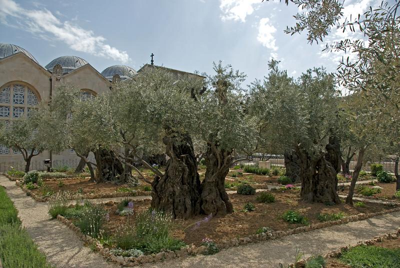 The Garden Tomb in Jerusalem, Israel