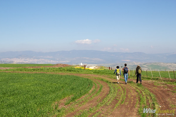 Hiking the Jesus Trail - near Kibbutz Lavi