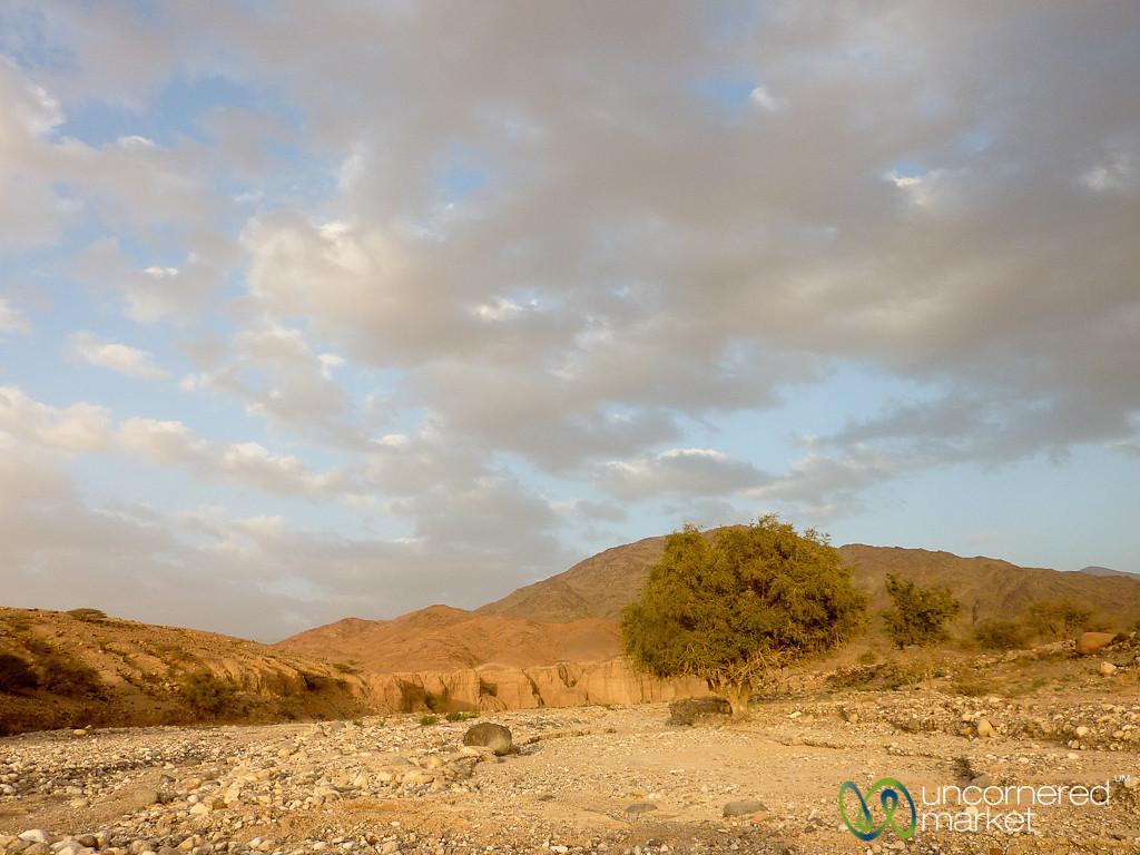 Late Afternoon at Feynan, Jordan