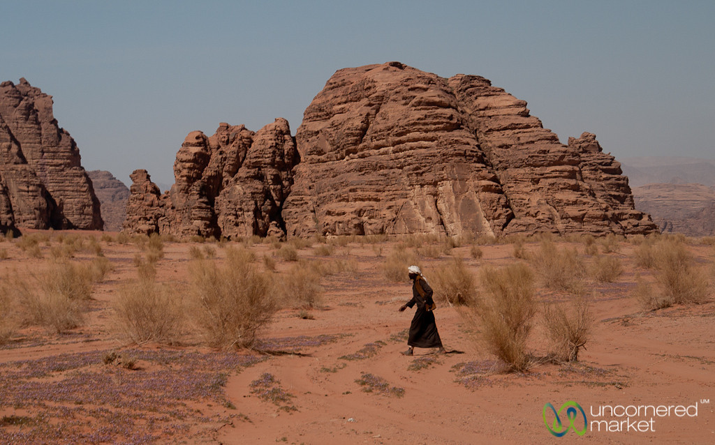 Bedouin Going After his Flock at Wadi Rum, Jordan