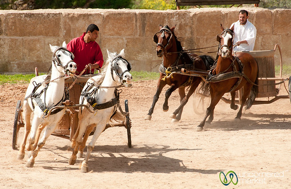 Let the Chariot Races Begin - Jerash, Jordan