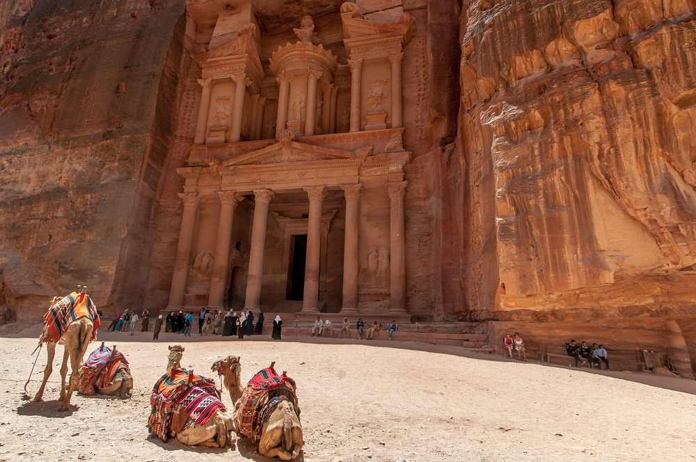 Camels at the Treasury Building in Petra, Jordan