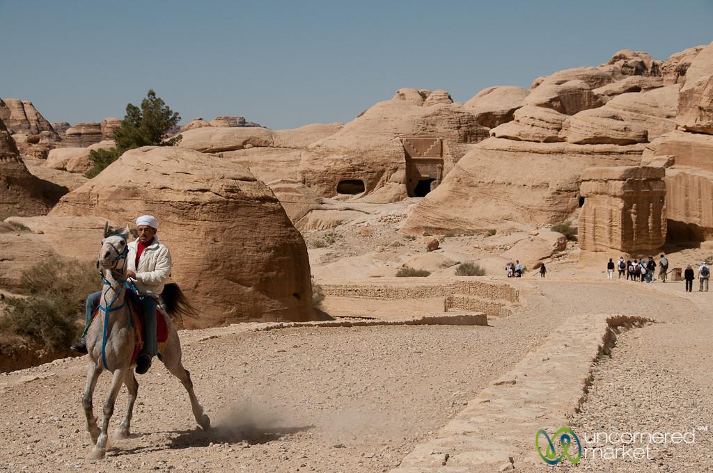 Horses at the Entrance to Petra, Jordan
