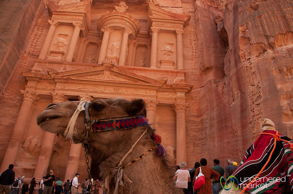 A Camel's View of the Treasury at Petra, Jordan