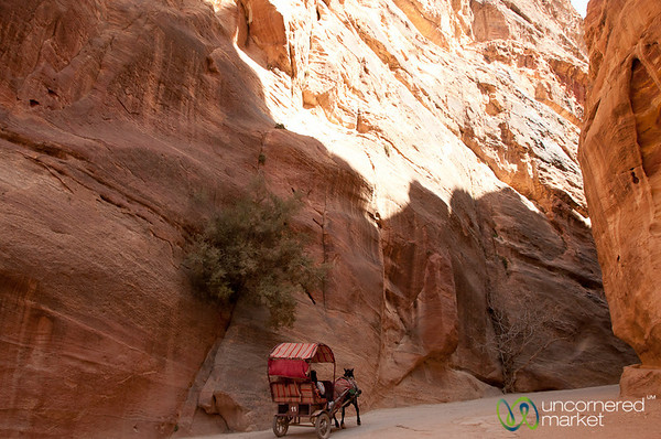 Horse Carriage Goes Deep Into the Siq - Petra, Jordan
