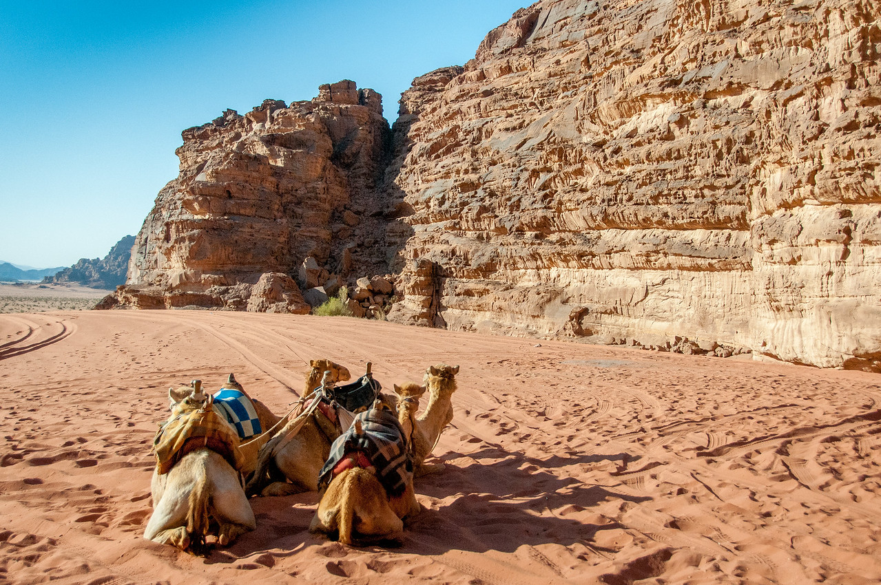 Wadi Rum Protected Area