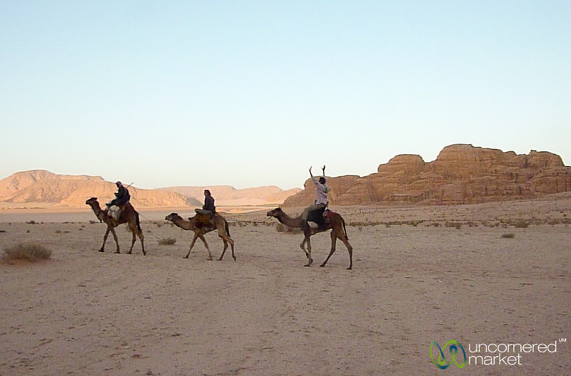 Look Ma, No Hands! Camel Riding in Wadi Rum, Jordan