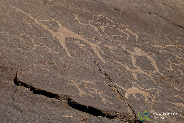 Ancient Rock Paintings of Camels - Wadi Rum, Jordan