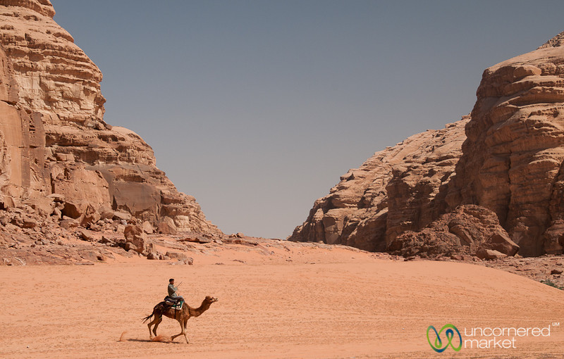 A Bedouin Returning with his Camel - Wadi Rum, Jordan