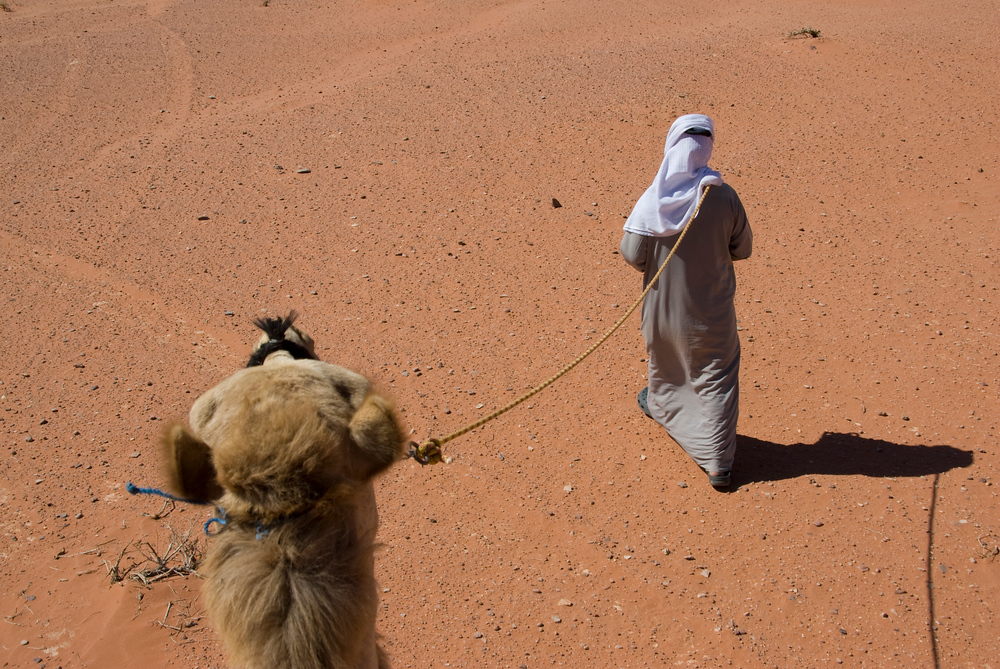 Guide and camel, Wadi Rum, Jordan
