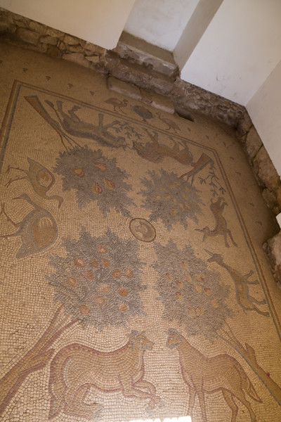 One of the Many Mosaics Preserved at the Madaba Archeological Museum (©simon@myeclecticimages.com)