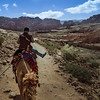 Petra Camel Ride copy