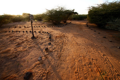 The Cheetah Refuge offers paths and is a nice excursion from the daily same-same of Camp Lemonier.