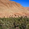 Casbah near Tinghir Oasis
