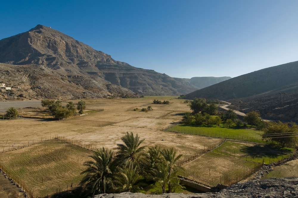 A Green Valley on the Musandam Peninsula of Oman