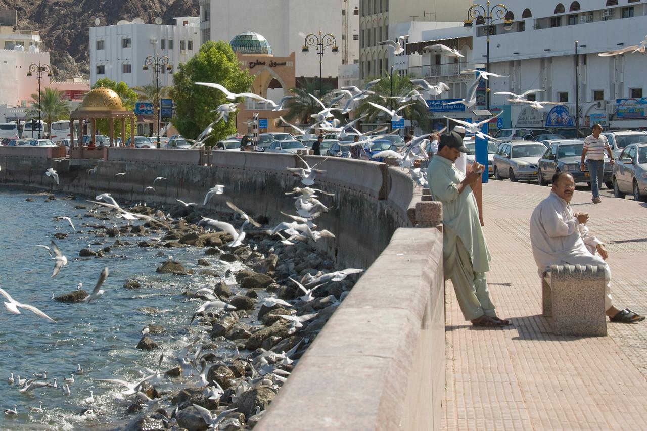 Men With Birds - Muscat, Oman