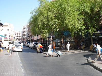 Greenery at Souk Deira And 18C Street, Deira, Dubai - UAE.