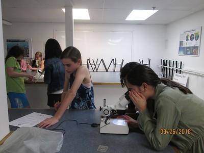 microplastic lab