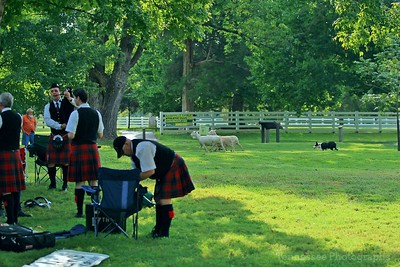 Middle Tennessee Highland Games Pipes, Entertainments & Hurling Gallery 9/10/16
