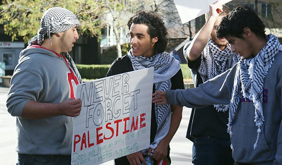 Three young men wearing keffiyehs talking to each other, one looking at sign about Palestine held by other man.