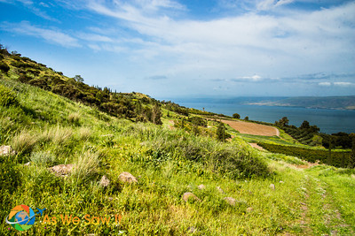 The mountains surrounding the Sea of Galilee just seem to rise from the sea bed.