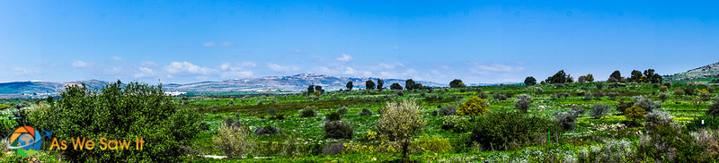 Panorama of Mount Hermon as seen from Tel Dan Nature Reserve