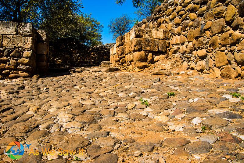 ancient cobblestone path leading to Dan city gate