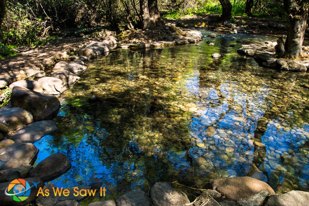 Freshwater pool at Tel Dan