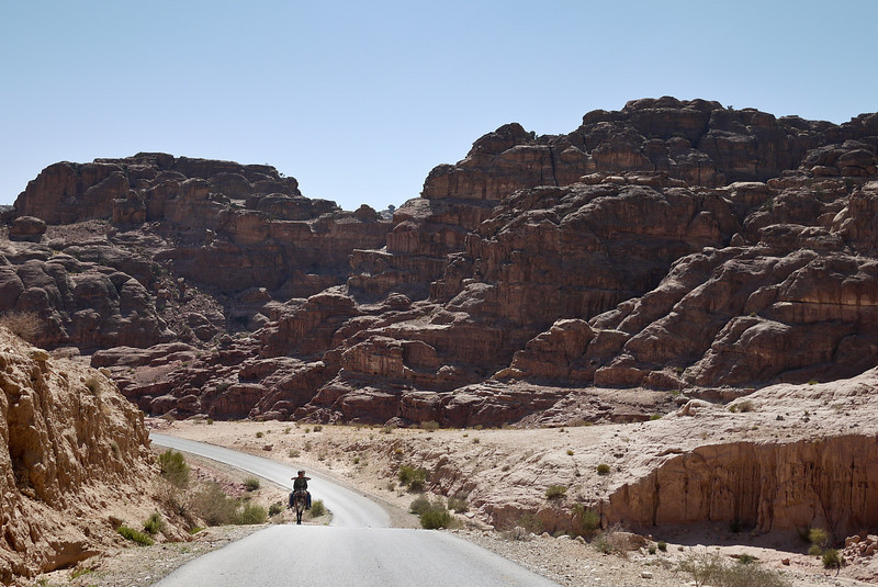 A horse and ride set against the vast city of Petra, Jordan.