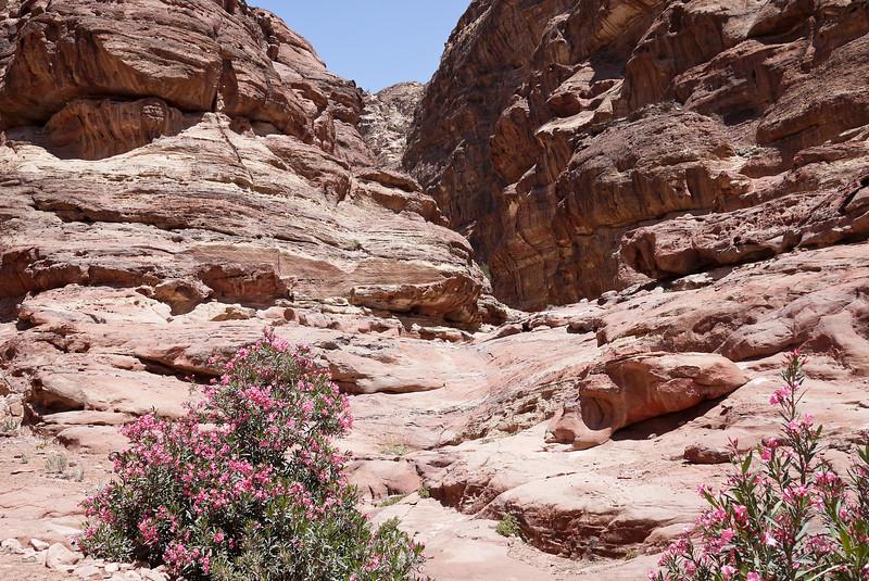 Hiking up to El Deir in Petra, Jordan.