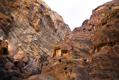 Red rocks extend into the sky on every side as you wide your way into Petra, Jordan.
