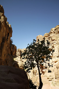 A small, wide area on the way to the Treasury inside Petra, Jordan.