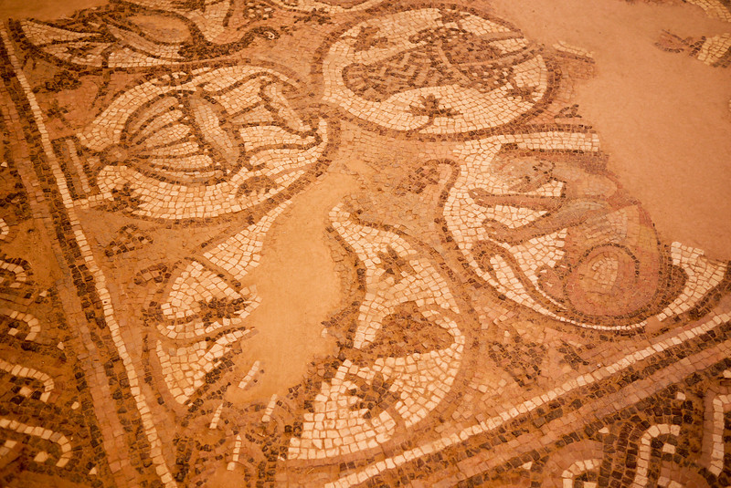 A mosaic from a Byzantine church inside Petra, Jordan.