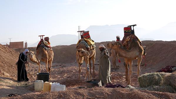 The camel pit, Wadi Rum, Jordan